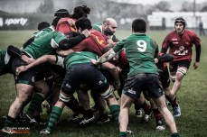 Rugby Photo #35