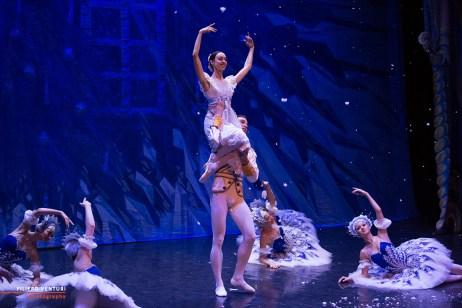 Moscow Ballet, The Nutcracker, photo 45