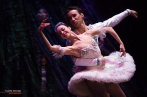 Moscow Ballet, The Nutcracker, photo 60