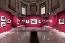 Mostra Genesi di Sebastião Salgado, a Forlì, foto 5