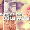 Les chroniques de Miawka