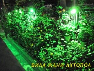 ahtopol-decorative-lighting