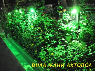 ahtopol-decorative-lighting