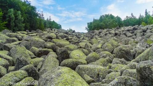 Каменната-река-на-Витоша