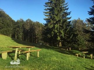 Прекрасната поляна пред хижа Бенковски