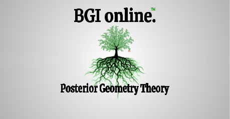BGI Europe Seminars® BGI® online.™ Posterior Geometry Theory for Chiropractors