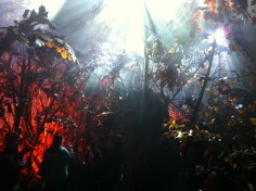 """The forest became a """"perfume sculpture"""" with the lights, sounds and scent that the guests could explore."""