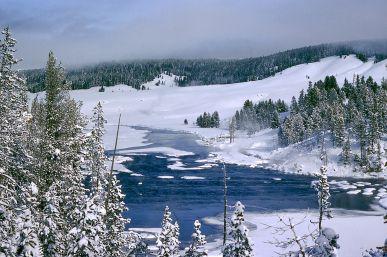 Yellowstonewinter