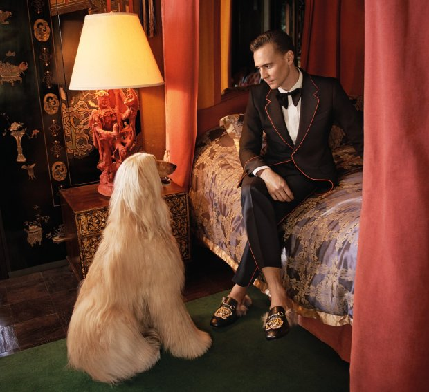 Tom Hiddleston para Gucci