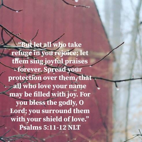 Psalm 5:11-12