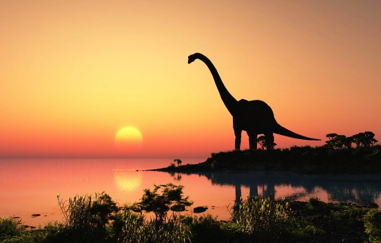 A woman comes across a 165 million year old dinosaur footprint – BGR