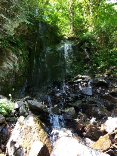 Wilson River Lower Falls