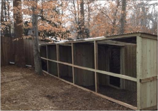 Bald Eagle enclosures