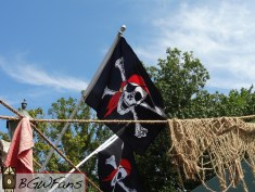 A closer look at one of the fancy flags