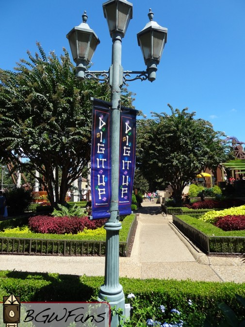 Dig it Up's banners can be found throughout San Marco once again this year