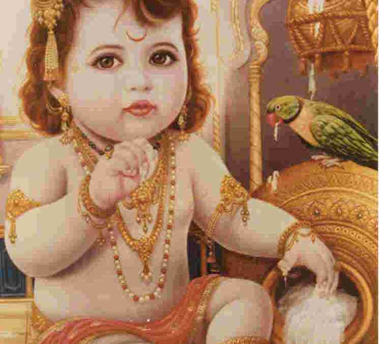 HOW CAN WE GET THE SHELTER OF THE VRAJA DEVIS?