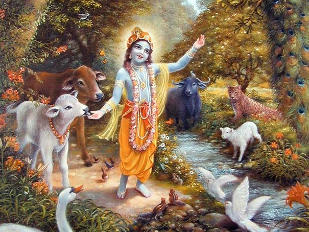 WHEN DOES KRSNA COME TO HELP THE DISTRESSED?