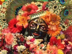Gaura-Purnima-2006_03