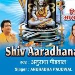 शिव जी भजन लिरिक्स – #Anuradha Paudwal  #Shiv Shankar Ko Jisne Puja #shiv aaradhana #shiv bhajan #morning bhajan #aditya