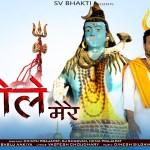 शिव जी भजन लिरिक्स – Sun Bhole Mere   Shiv Bhajan 2021   भोलेनाथ का बहुत ही प्यारा सॉन्ग   सुन भोले मेरे   Bablu Ankiya,