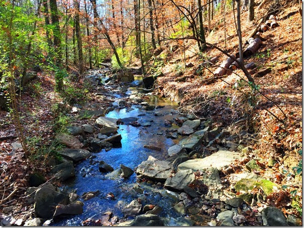 To Hike or to Run: Bham Trails to Try