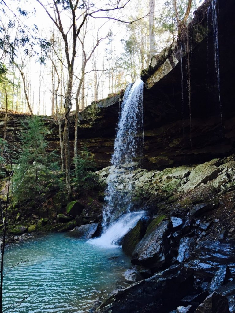 Bankhead National Forest