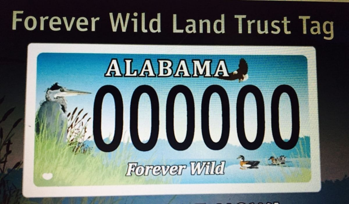 "New video about Alabama's ""Conservation Car Tags"""
