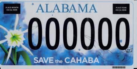 Cahaba River Society - Birmingham, Alabama