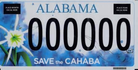 Besides the Cahaba Lily, what else is on the new Cahaba River Society tag?