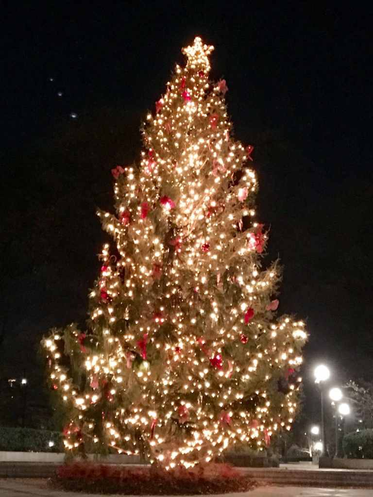 Birmingham's Christmas Tree at Linn Park