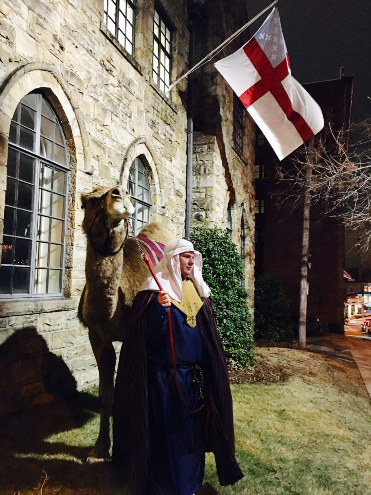Epiphany 2017: A camel was spotted in Southside Birmingham tonight