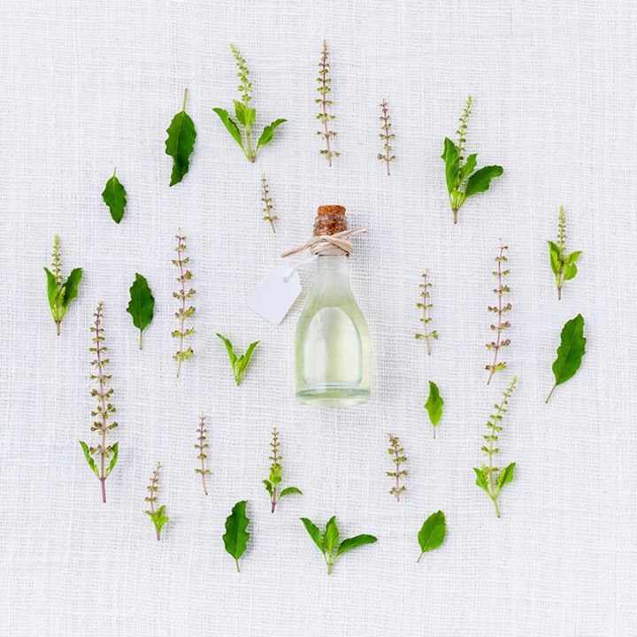 Garden Essentials Uses of Plant Derived Essential Oils