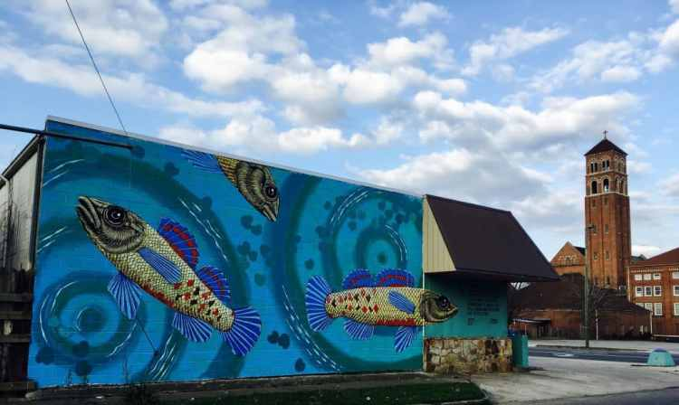 A mural of tiny fish, Tiny in Birmingham, Alabama