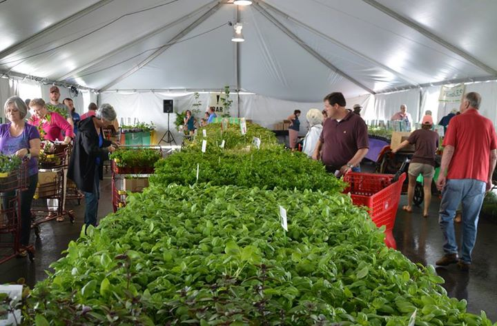 Spring Plant Sale Birmingham Botanica Gardens Top things to do this week