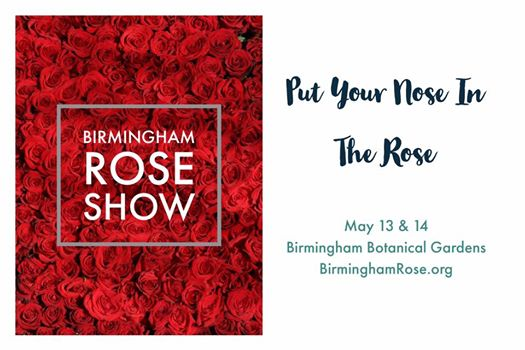 Birmingham Rose Show Birmingham AL Bham Now Guide to Mothers Day in Birmingham