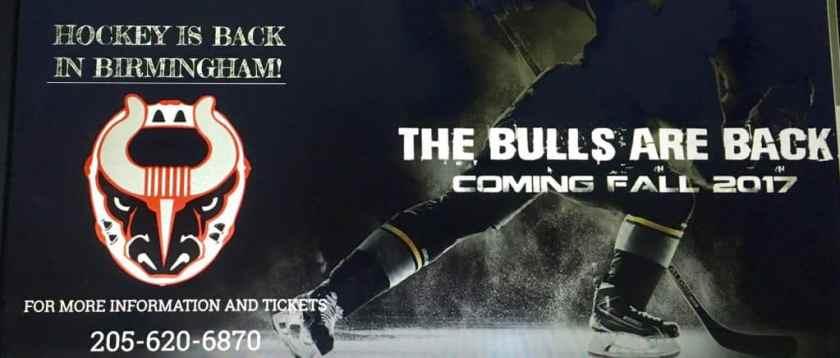 Birmingham Bulls