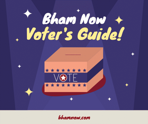 jh daniel, Voter's guide, graphic, birmingham, alabama, voting