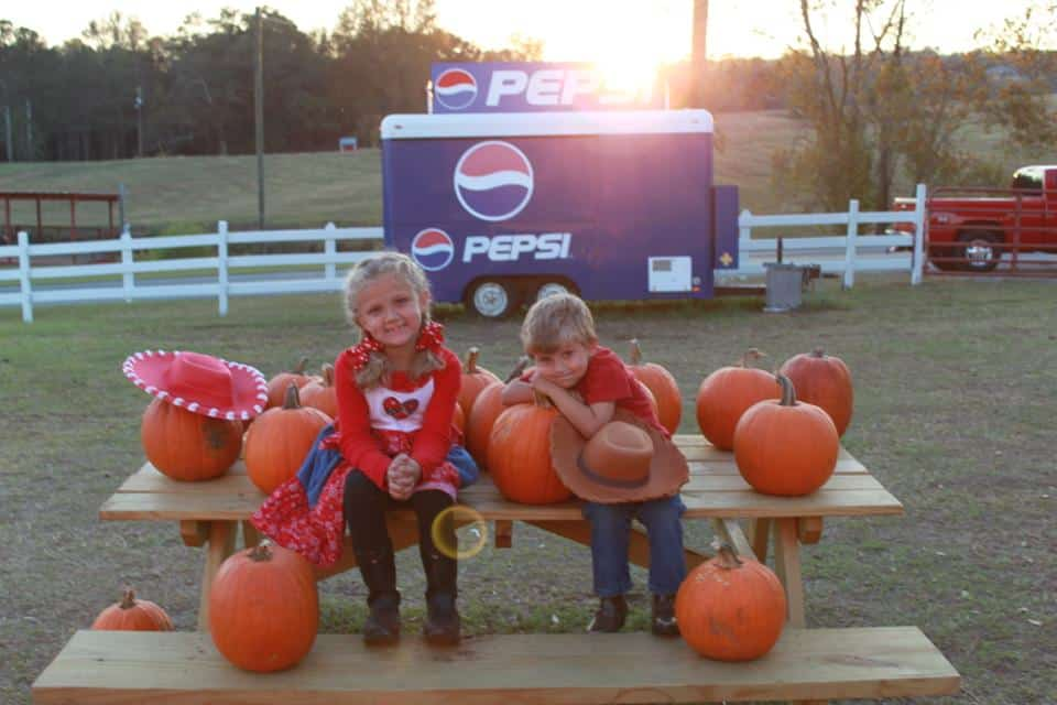 Love fall festivals, pumpkin patches and state fairs? This post is for you!