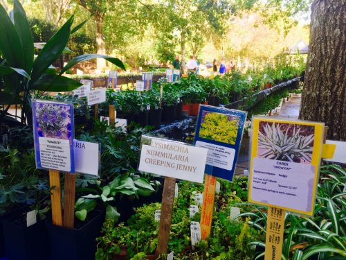 Don\'t miss the Birmingham Botanical Gardens Fall Plant Sale this ...