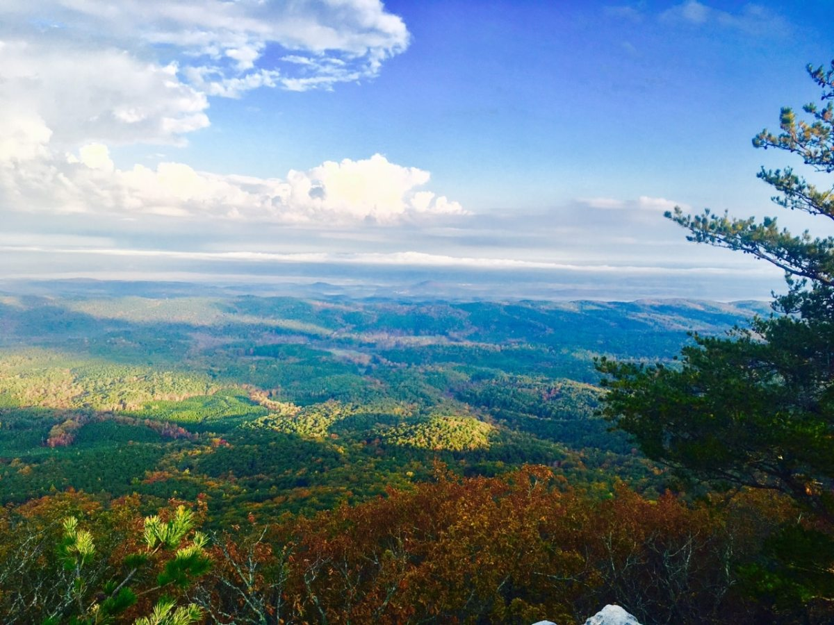 Alabama State Parks providing free admission to veterans year-round