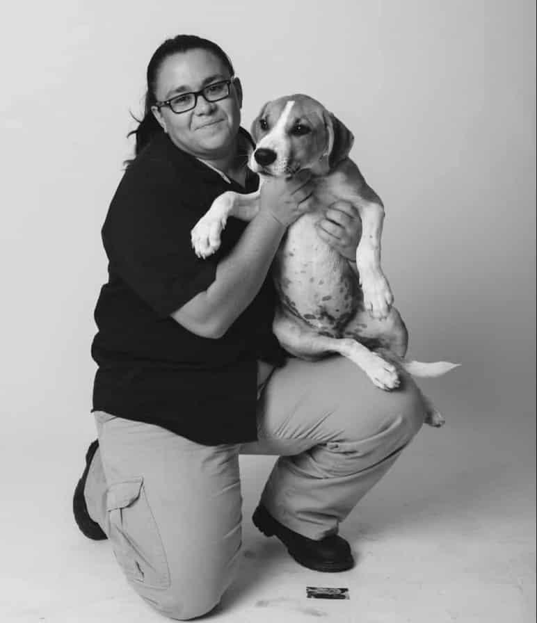 Birmingham, animals, animal control, pets, cats, dogs