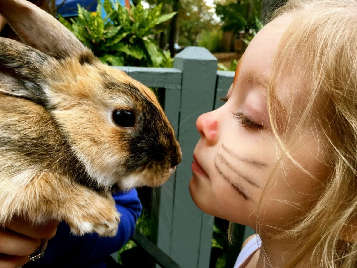 The spring guide to Easter Bunny photos and egg hunts happening around Birmingham