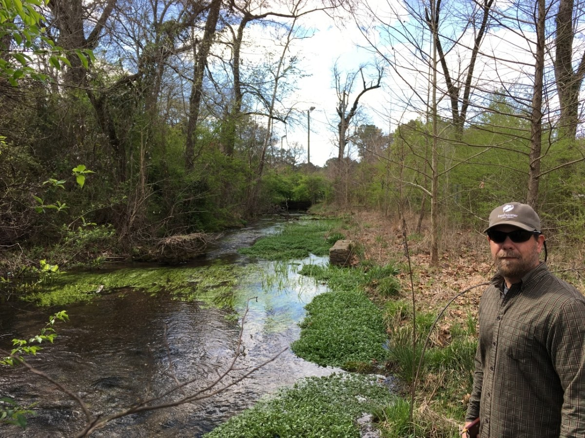 Birmingham Roebuck Springs habitat for the endangered Watercress darter to be restored