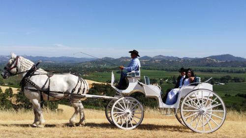 Birmingham, Alabama, horse, Carriage