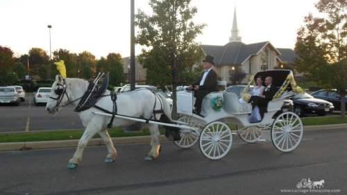 Birmingham, Alabama, horse, drawn, carriage