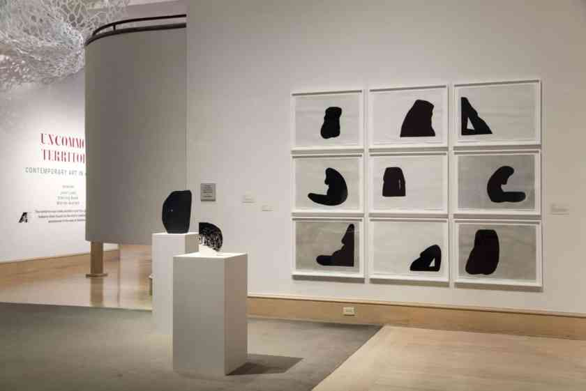 Birmingham, Montgomery Museum of Art, Amy Pleasant, Guggenheim Fellowship