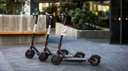 Birmingham, Alabama, Bird, scooter
