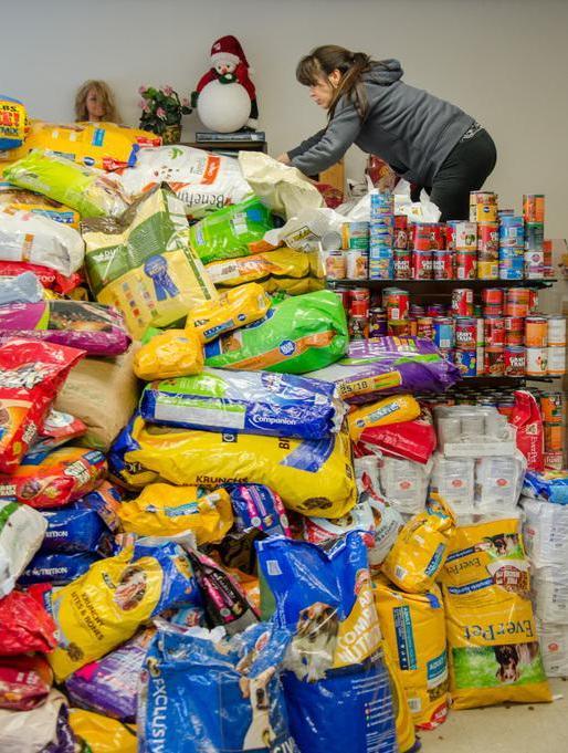 Birmingham, FEMA, animals, animal rescue, pet food