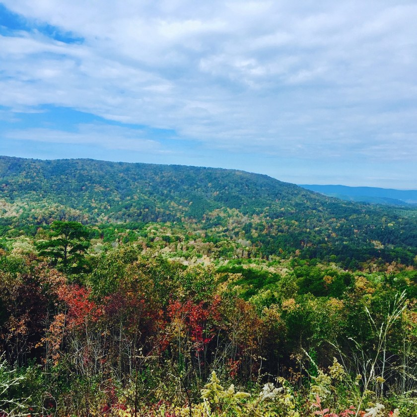 Birmingham, Cheaha State Park, scenic drives, Talladega Scenic Drive, Driver's Way