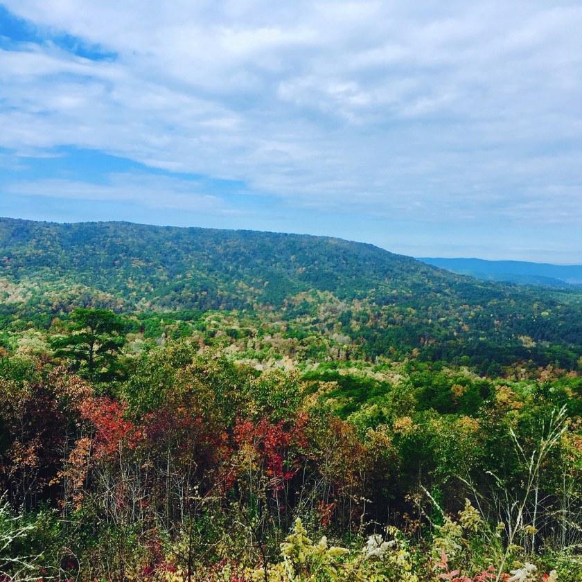 Birmingham, Cheaha State Park, scenic drives, Talladega Scenic Drive, Driver's Way
